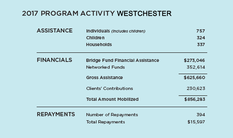The Bridge Fund of Westchester Program Activity 2016